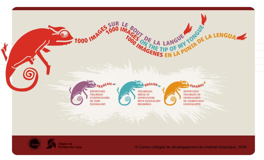 Base de Données de 3000 Expressions Idiomatiques en Anglais, en Français et en Espagnol