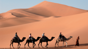 Learn Basic Arabic Phrases Essential for Travel, Free from BBC Languages