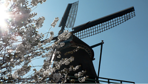 Learn Dutch Phrases Essential for Travel, Free from BBC Languages
