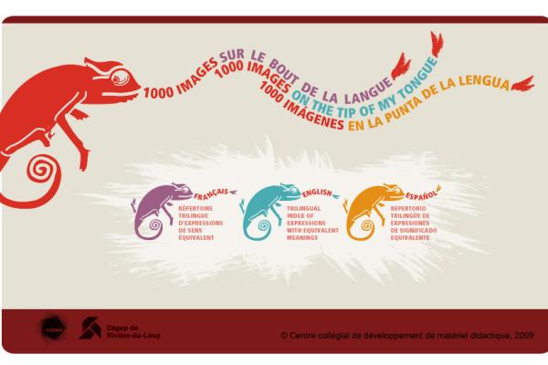 Repertorio de 3000 Expresiones Idiomáticas en Inglés, Francés y Español