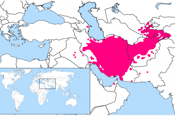 Learn about the Persian (Farsi) Language